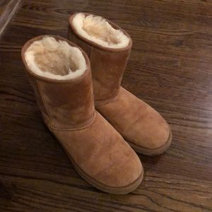 UGG Short Boots in Chesnut